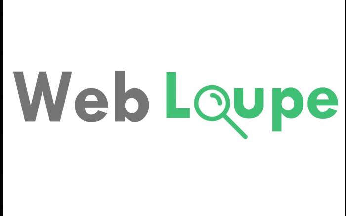WEB LOUPE SARL